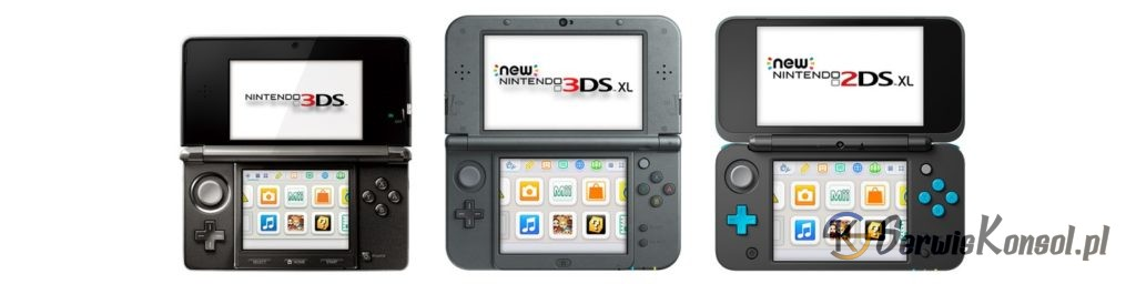 H4x1_Nintendo3DSFamily_support_image1600w